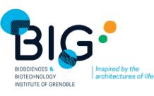 BIG - BGE